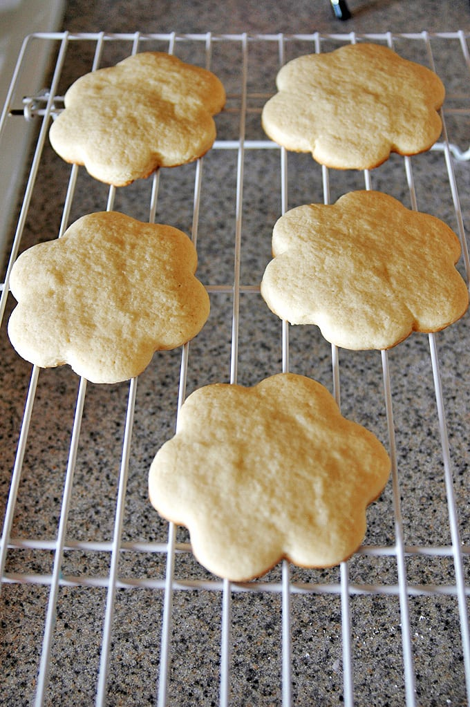 Sugar Cookie Topping