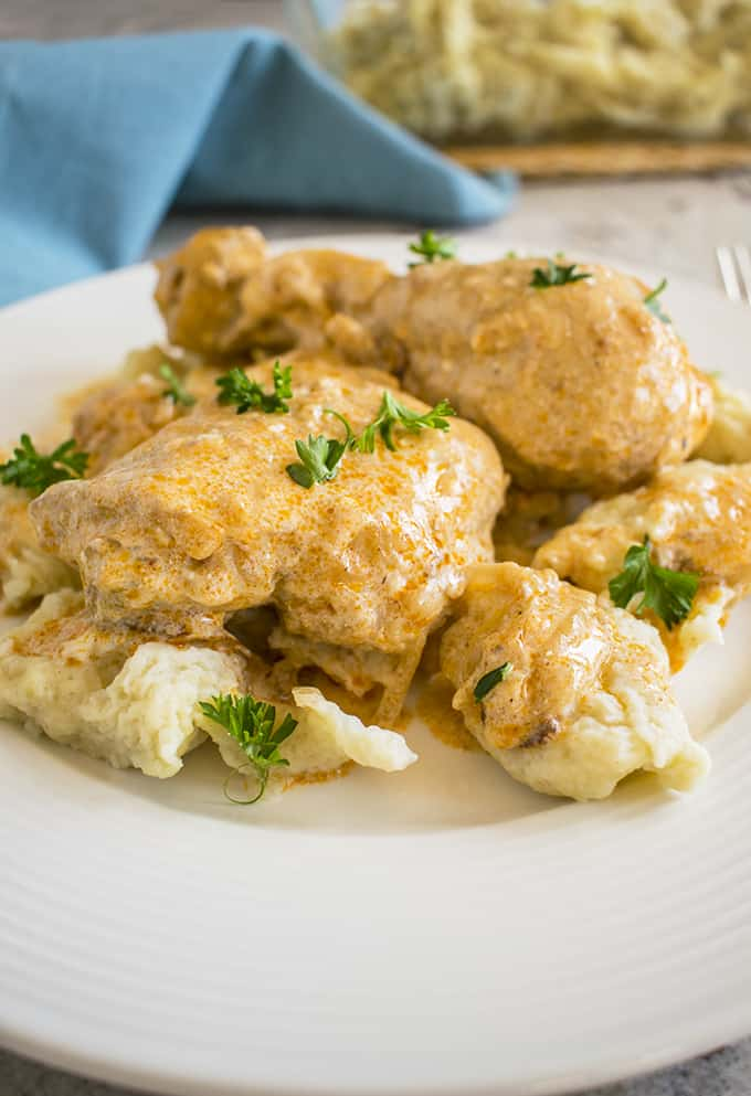 close-up photo of hungarian chicken paprikash with dumplings