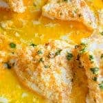 Photo of sheet pan with baked Lemon Parmesan Cod with Garlic Butter