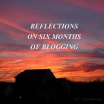 Reflections on Six Months of Blogging