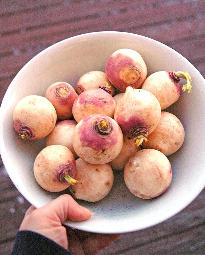 Raw-Turnips