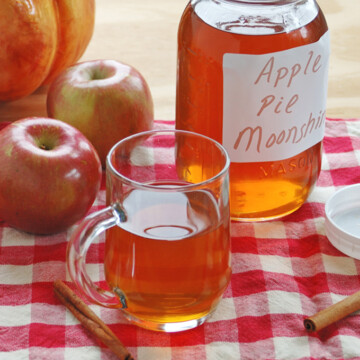 mason jar and mug of apple pie moonshine, apples, cinnamon sticks
