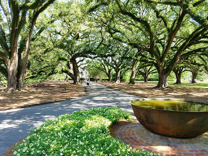 Oak Alley Plantation Photo - New Orleans Restaurants and Highlights from Our Trip #neworleans #neworleanstravel #nola