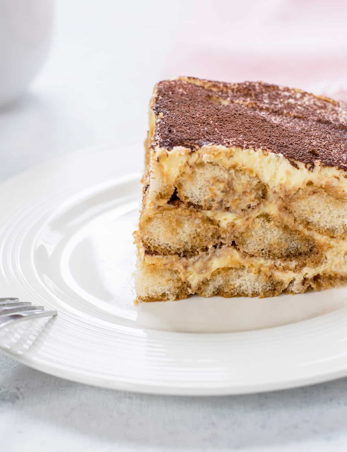 closeup of piece of layered cake topped with cocoa